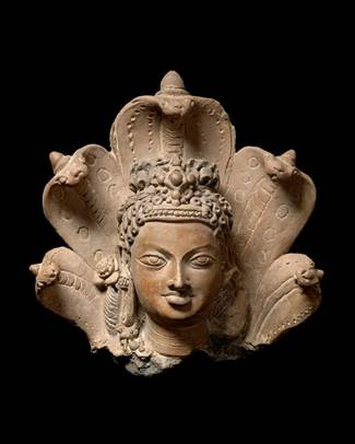 Head of Manasa, Hindu folk goddess of snakes, Gupta period ...